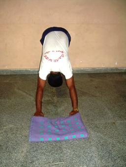 Surya namaskara step