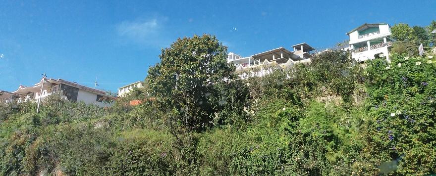Kodai houses on the hills