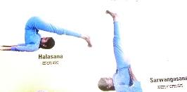 yoga poses asanas